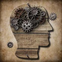 Neuropil, booster votre cerveau