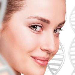Epigénétique : un chemin vers la santé cellulaire